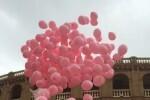 la-ciudad-se-prepara-para-acoger-la-convocatoria-valencia-contra-el-cancer-el-proximo-domingo