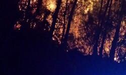incendio boluda