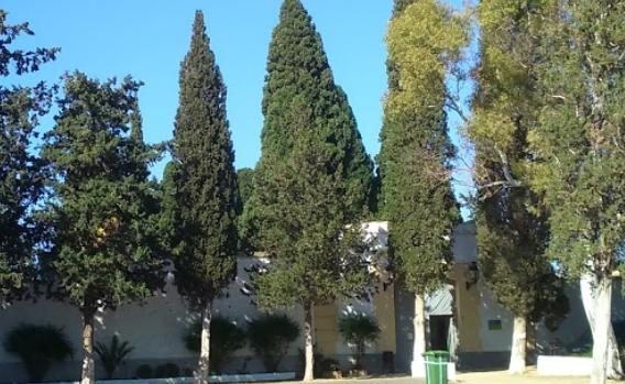 cementerio-municipal-de-bunol-buscar-con-google
