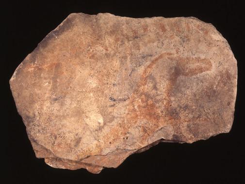 desvelado-el-secreto-del-rojo-y-el-amarillo-en-las-pinturas-prehistoricas-de-parpallo_image_380