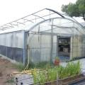 el-ayuntamiento-construira-un-invernadero-en-los-viveros-municipales-de-el-saler
