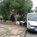 el-ayuntamiento-inicia-los-trabajos-para-reponer-el-cable-de-cobre-robado-en-el-alumbrado-de-la-punta