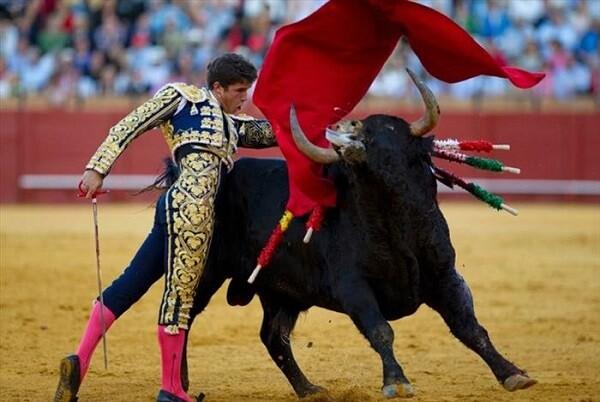 el-tribunal-constitucional-anulo-la-disposicion-legal-que-prohibio-desde-2010-las-corridas-de-toros-en-catalunya