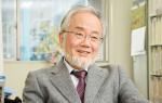 Yoshinori Oshumi, investigador en el Instituto de Tecnología deTokio (Japón). / Nobel Prize