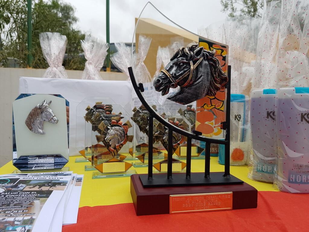 iii-prueba-de-la-copa-federacion-de-doma-de-alta-escuela-2016-centro-hipico-el-castoreno-benaguacil-1