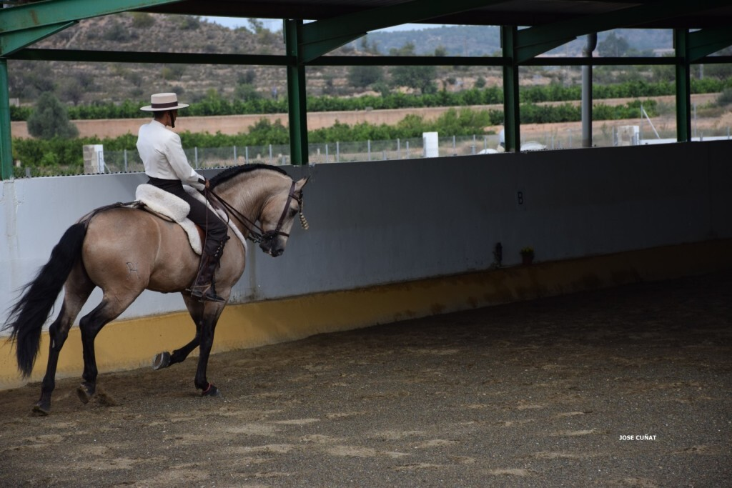 iii-prueba-de-la-copa-federacion-de-doma-de-alta-escuela-2016-centro-hipico-el-castoreno-benaguacil-17