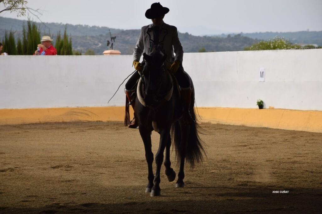 iii-prueba-de-la-copa-federacion-de-doma-de-alta-escuela-2016-centro-hipico-el-castoreno-benaguacil-25