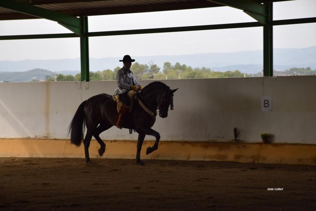 iii-prueba-de-la-copa-federacion-de-doma-de-alta-escuela-2016-centro-hipico-el-castoreno-benaguacil-28