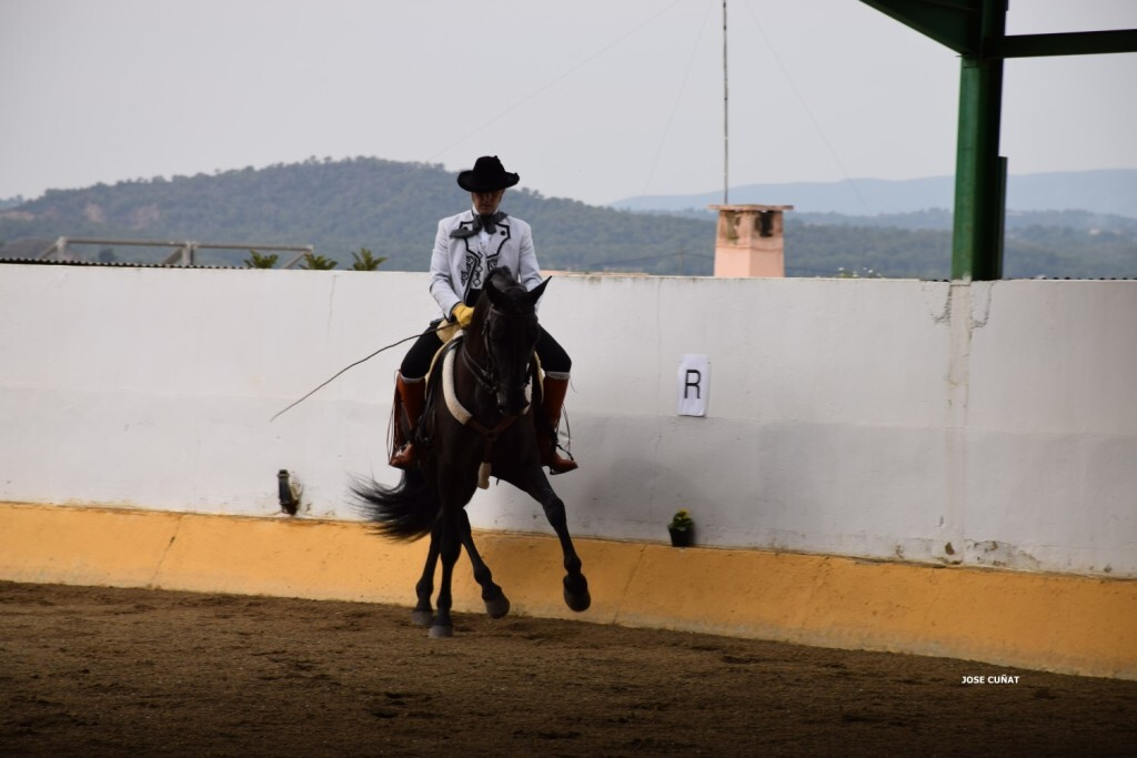 iii-prueba-de-la-copa-federacion-de-doma-de-alta-escuela-2016-centro-hipico-el-castoreno-benaguacil-32