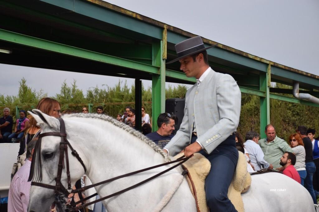 iii-prueba-de-la-copa-federacion-de-doma-de-alta-escuela-2016-centro-hipico-el-castoreno-benaguacil-39