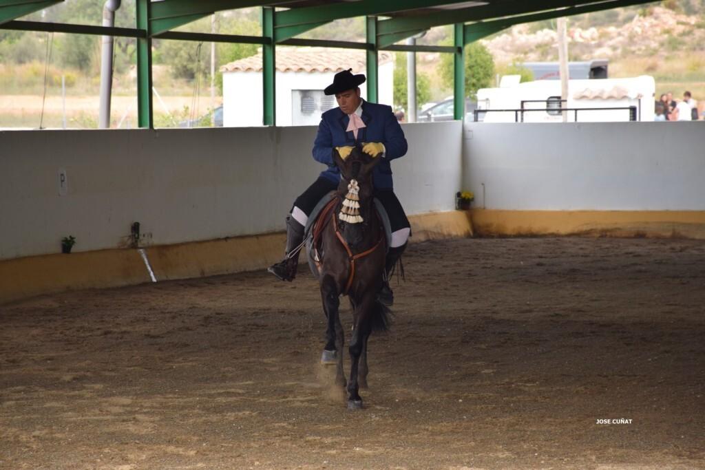 iii-prueba-de-la-copa-federacion-de-doma-de-alta-escuela-2016-centro-hipico-el-castoreno-benaguacil-9