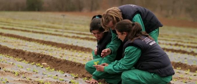 nace-una-nueva-convocatoria-de-la-obra-social-la-caixa-accion-social-en-el-ambito-rural