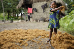 A girl gathers palm nut chaff (used for starting fires) that was laid out to dry in the village of Mano Njaigbla, Kenema district, Sierra Leone on Monday September 23, 2013.