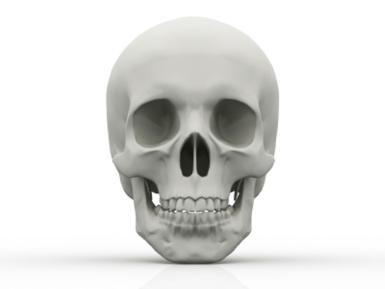 davidcastillodominici-skull-freedigital