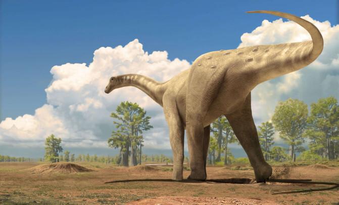 titanosaure_image671_405