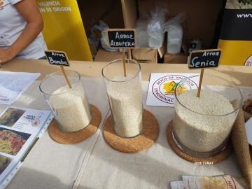 arroz-bomba-albufera-senia-valencia-4