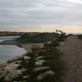 el-ayuntamiento-denuncia-la-pasividad-del-gobierno-central-para-proteger-las-playas-de-la-albufera