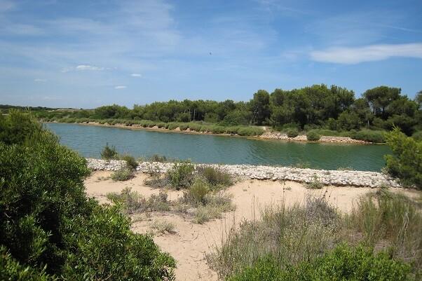 el-ayuntamiento-elabora-140-000-nuevos-mapas-aereos-del-parque-natural-de-la-albufera