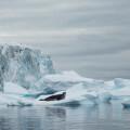 el-hielo-de-la-antartida-se-hunde-en-agua-caliente_image_380