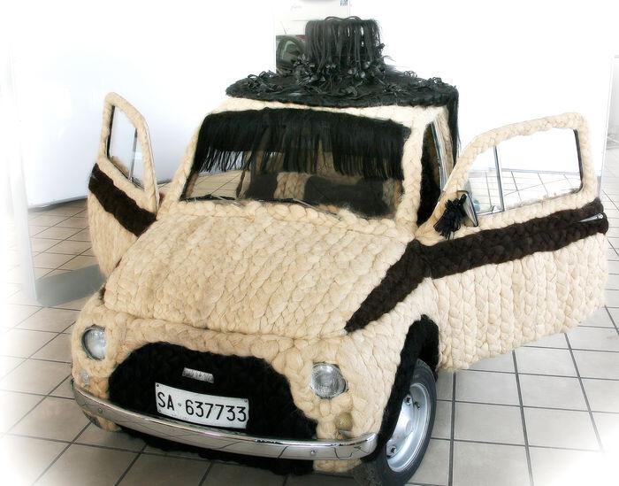 img-subasta-coche-mas-peludo-catawiki
