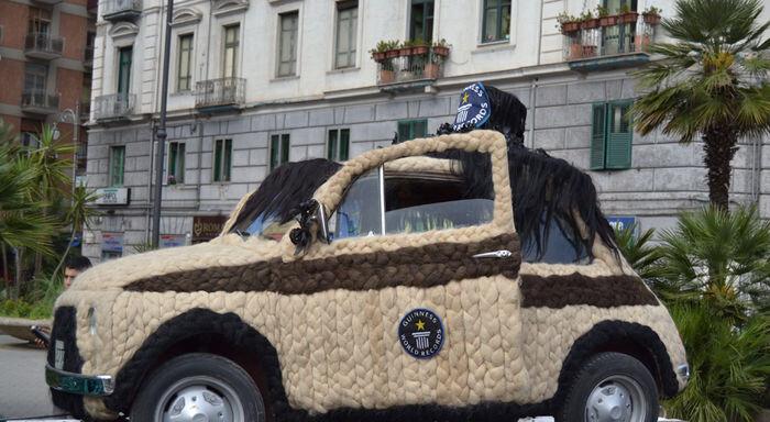 img4-subasta-coche-mas-peludo-catawiki