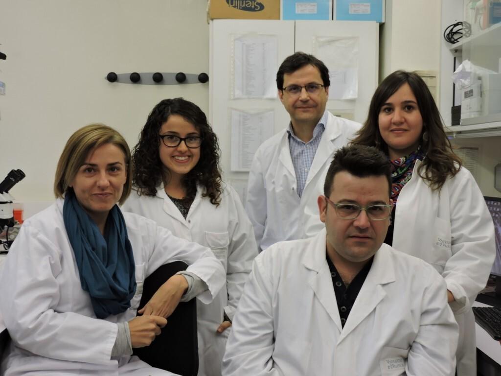 (De izquierda a derecha): Estefanía Cerro, Juan M. Fernández, María Sabater, Beatriz Llamusí y Rubén Artero, del Departamento de Genética y de la Estructura de Investigación Interdisciplinar en Biotecnología y Biomedicina (ERI BIOTECMED) de la Universitat de València, y del Grupo de Genómica Traslacional del Instituto de Investigación Sanitaria del Hospital Clínico de Valencia (INCLIVA