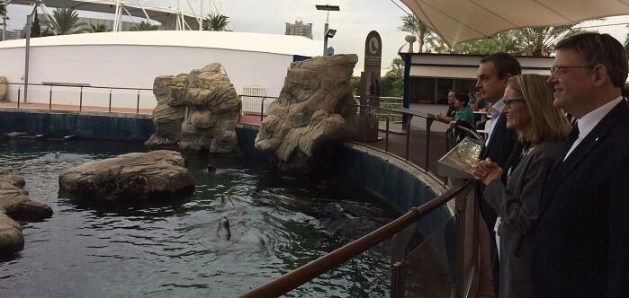las-zonas-visitadas-en-compania-de-la-presidenta-de-avanqua-celia-calabuig-fueron-el-arca-del-mar-el-recinto-de-los-leones-marinos-asi-como-la-zona-de-cuarentena-de-animales-del-parque