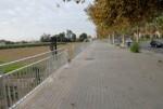 movilidad-sostenible-protege-a-los-peatones