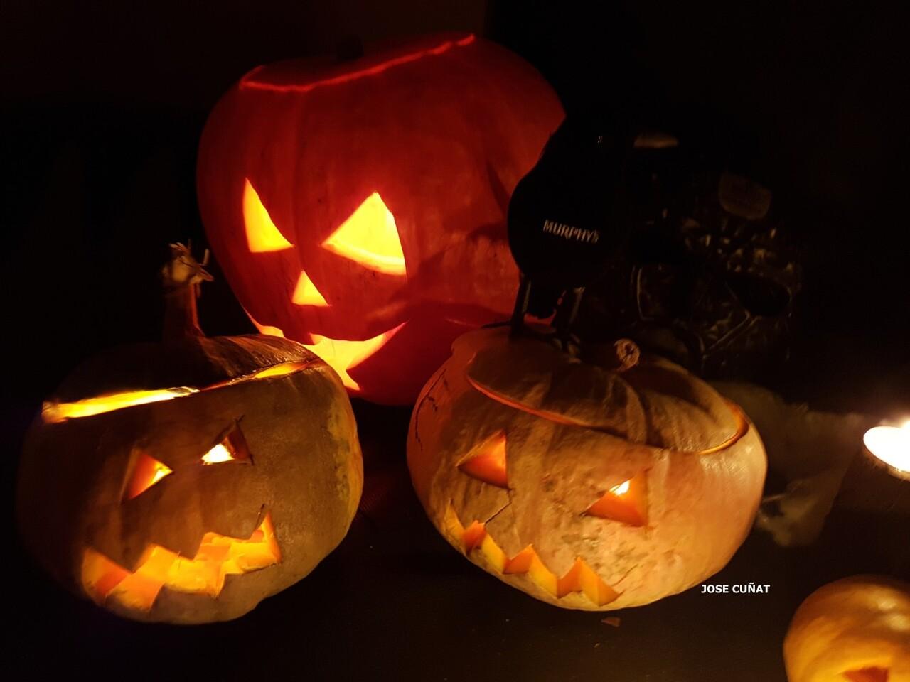 como-hacer-una-calabaza-de-halloween-23