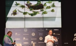dolia-manuel-alonso-quico-torres-gastronoma-cocina-central-2016-46