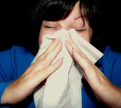 La gripe A es una infección vírica altamente contagiosa en animales que también afecta a los humanos./ Mcfarlandmo