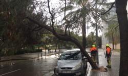 imagenes-temporal-de-lluvias-en-valencia-5