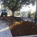 obras-en-el-bulevar-de-la-avenida-aragon