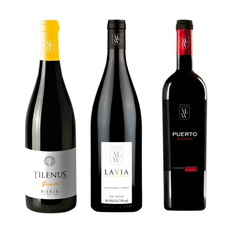 tilenus-lavia-puerto-salinas_vf