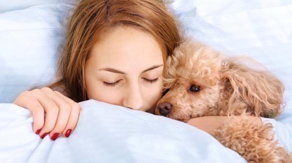 Dormir con la mascota puede ser la mejor opción para conciliar el sueño (iStock)
