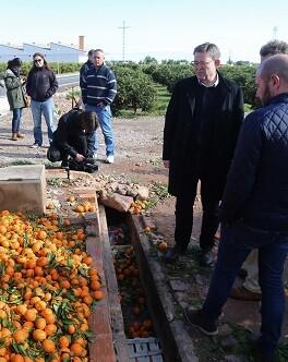 El President ha visitado Faura para conocer de primera mano los daños ocasionados por las fuertes lluvias en la agricultura.