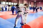 El Valencia Club de Judo ofrece a la Diputación el Campeonato de Europa. (Foto-Abulaila).