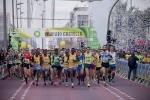 La Fundación Trinidad Alfonso, nuevo colaborador principal de Marató BP Castelló.