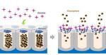 Nuevos-nanodispositivos-para-detectar-cocaina-en-la-saliva_image_380