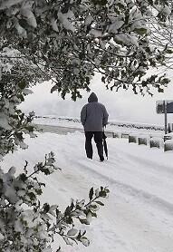 Parques y bosques públicos permanecerán cerrados.