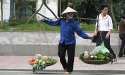 vietnam-1911485