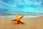Consejos para planear las vacaciones de verano.