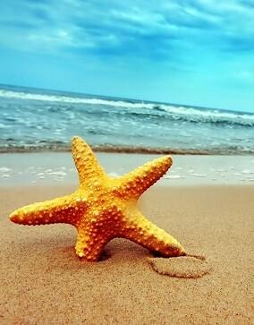 El verano siempre lleva consigo la palabra vacaciones.