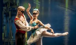 Gala del Ballet de San Petersburg (1)