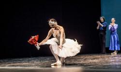 Gala del Ballet de San Petersburg (10)