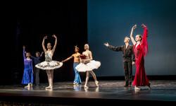 Gala del Ballet de San Petersburg (11)