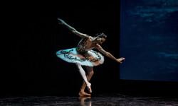 Gala del Ballet de San Petersburg (7)
