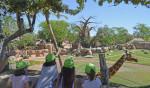 BIOPARC Valencia - Expedición África - escuela de vacaciones