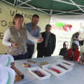Castelló arreplega més de 731 tones de fem en els primers dies de Magdalena