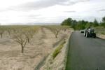 El Consell vuelve a convocar las ayudas para el acondicionamiento de caminos rurales.